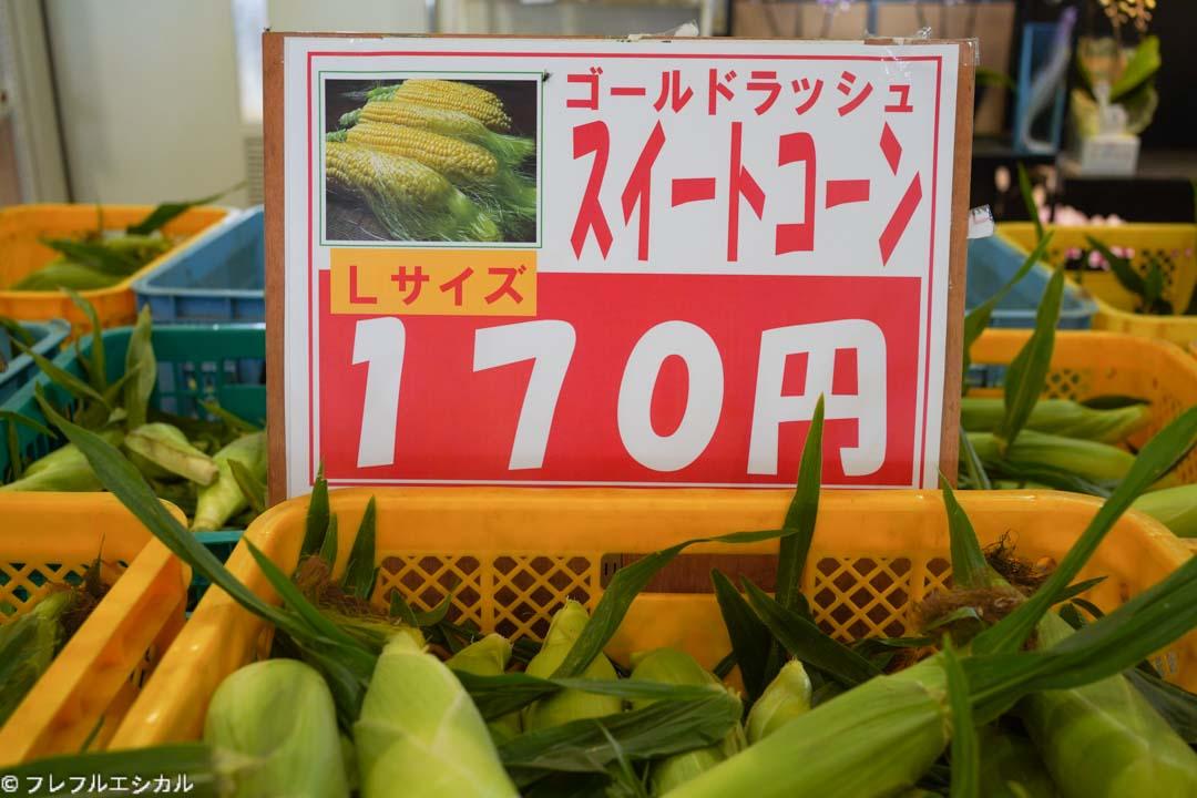 Corn Yamanashi